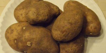 spuds for area pantries